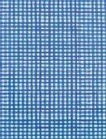 blue gingham paper
