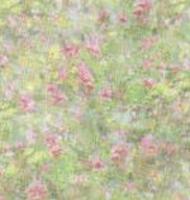 garden pink vellum