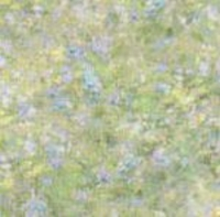 garden blue vellum